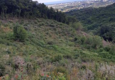 Продается земельный участок в Улцинь, Pistula области 21,159 м2 для сельского туризма